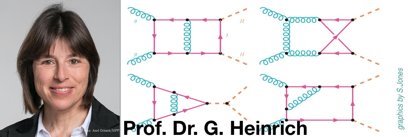 Prof Dr. G. Heinrich