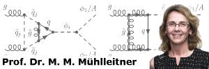 Prof. Dr. M. M. Mühlleitner